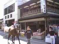 馬と人のふれあい